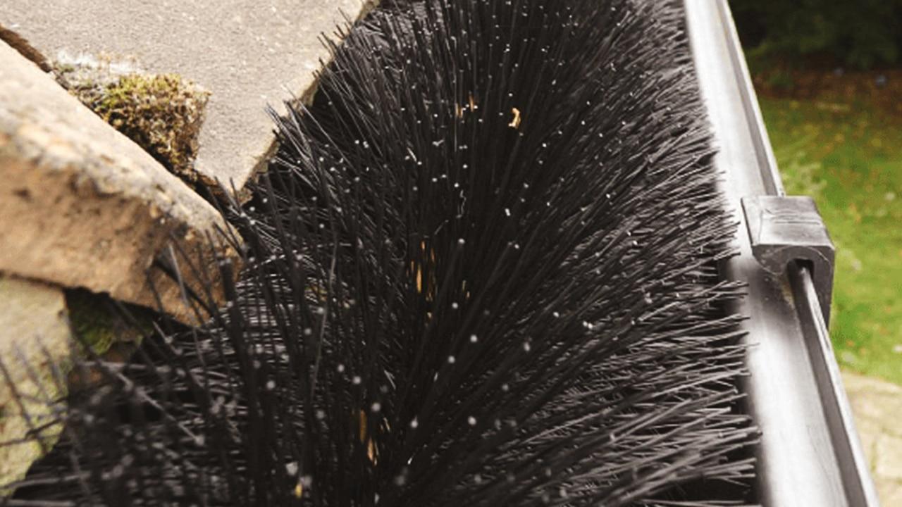 3 Benefits of the Hedgehog Gutter Brush Leaf